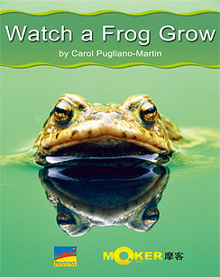 Watch a Frog Grow