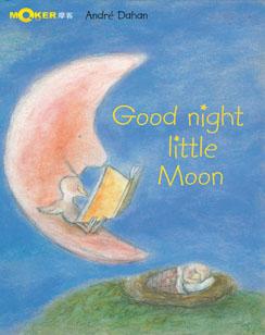 Good Night Little Moon