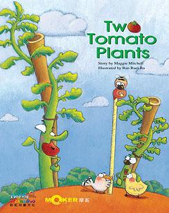 Two Tomato Plants